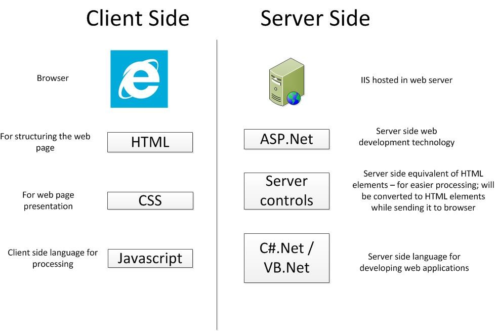 Server Side Client Side ASP.Net